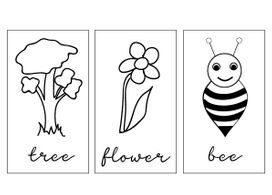 garden english flash cards